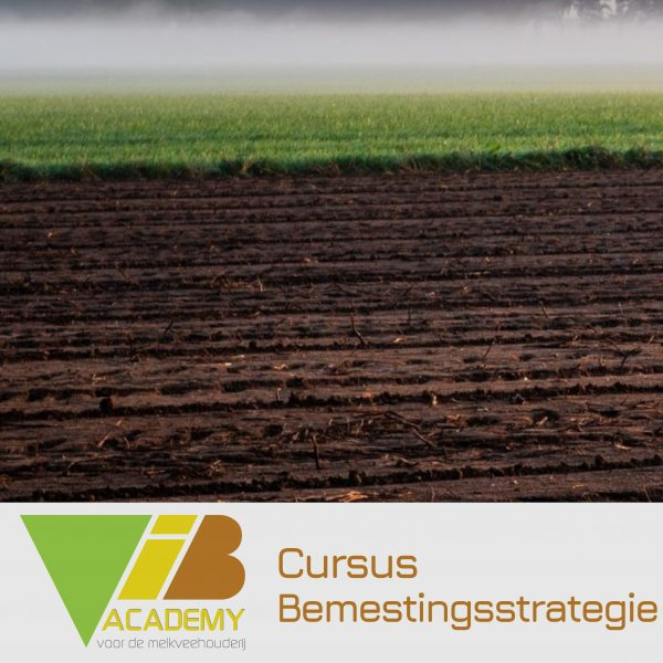 Cursus Bemestingsstrategie
